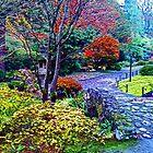 Japanese Gardens - Orton Series by Tamara Valjean