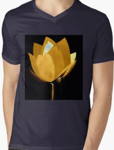 Gold and Silver Mens V-Neck T-Shirt