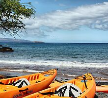 Makena Landing Kayaks by Teresa Zieba