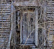 The Door To Nowhere by Kathleen   Sartoris