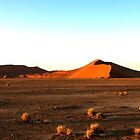 Sossusvlei Dunes by Marylou Badeaux