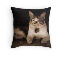 My Neighbour's Cat (1) Throw Pillow