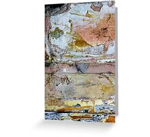 show me everything there is to know about love... Greeting Card