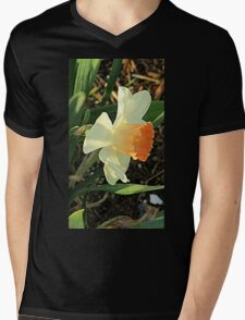 Spring Daffodil Mens V-Neck T-Shirt