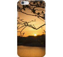 Sunset through a Tree iPhone Case/Skin