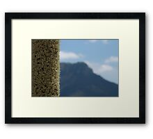 Xanthorrhoea with mountain Framed Print