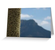 Xanthorrhoea with mountain Greeting Card