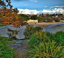 Paintbush - Balmoral Beach - The HDR Experience by Philip Johnson