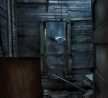 Room 6 by Tara Paulovits