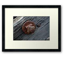 Nut and bolt. Framed Print