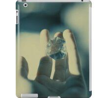 2887 iPad Case/Skin