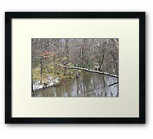 Creek on 117 Framed Print