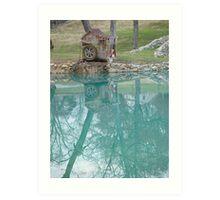 Water Wheel reflections in NC Art Print