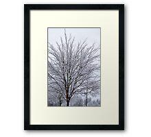 Iced Wilson Framed Print