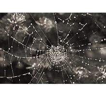 Crystals In Winter Photographic Print