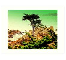CARMEL CALIFORNIAS ....LONE CYPRESS TREE Art Print