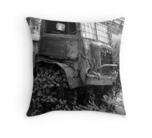 Old Truck... what is the story? Throw Pillow