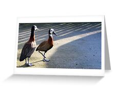 Waddle together Greeting Card