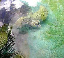 Maria the Turtle by Carole Boudreau