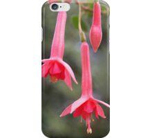 Fuchsia -- 'Billy Green' iPhone Case/Skin
