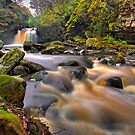 Thomason Foss by antonywilliams