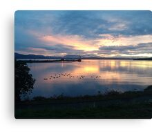 Quiet time on the Bay Canvas Print