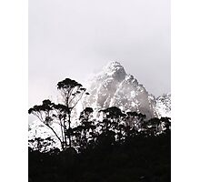 through the trees come mountains Photographic Print