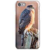 Cooper's Hawk iPhone Case/Skin