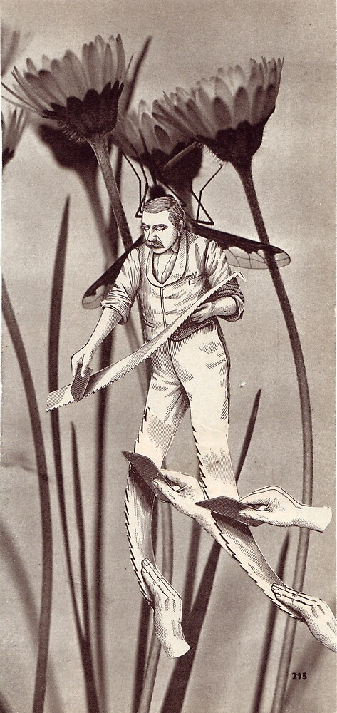 M Blackwell - The Harvester... by IWML