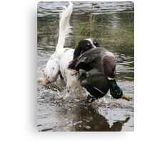 English Setter with a duck Canvas Print