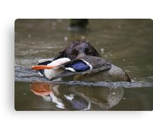 Bette with duck Canvas Print
