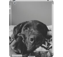 Adorable Chocolate Lab iPad Case/Skin