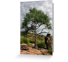 Outback Greeting Card