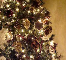 Ready for Christmas  by kelleybear