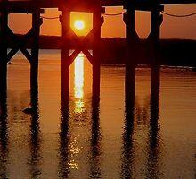 Late afternoon sun peeping through the pier by Ronee van Deemter
