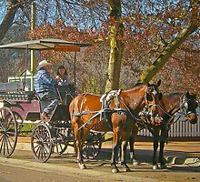 Bowral Horse & Carriage # 2 by George Petrovsky