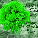 An Irish Blessing for St. Patrick's Day by SummerJade