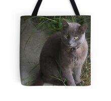 What next, Mum? Tote Bag
