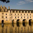 Chateau de Chenonceau by cpcphoto