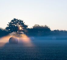 Early Rays by Pete Latham