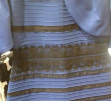 """THE DRESS.THE DRESS. In T-shirts, Pillows, Leggings, etc. """"I see White and Gold!""""  Sticker"""