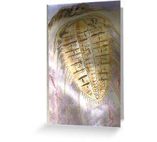 Trilobite- Odontopleurida  Greeting Card