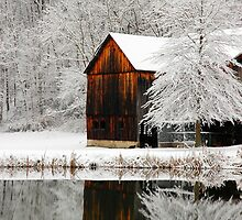 Winter Mirror by Michael  Dreese