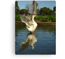 Stretching In The Park Canvas Print