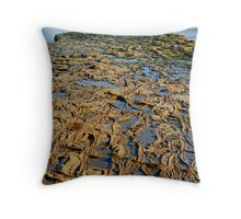 Rocky Roads Can Be Beautiful Throw Pillow