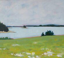 Isle Au Haut Harbour Meadow by Anita Dore