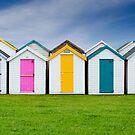 Beach Hut Series 15 by Amanda White