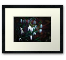 Bringing in the Spring Framed Print
