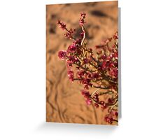 Flowers in the Desert Greeting Card