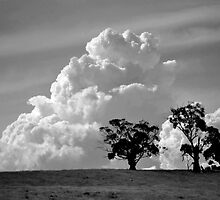 clouds by Jane  mcainsh